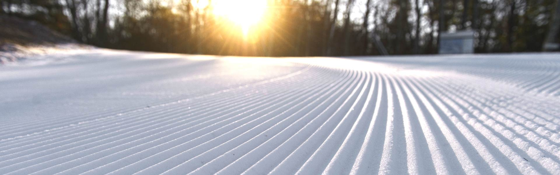 Sunset on corduroy groom