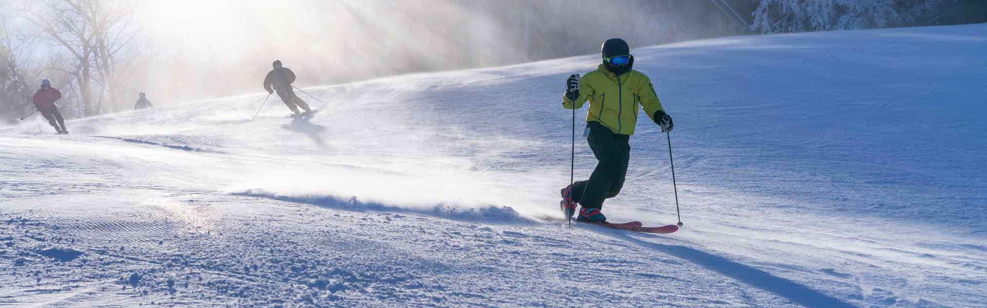 Skiers on sunny trail
